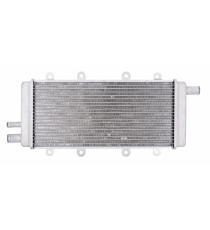 Motor RADIADOR para CHATENET 28, CH40 (motor LOMBARDINI DCI)