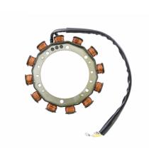 Bobina de carga Plumas de motor Lombardini / 2 hilos 30 amperios